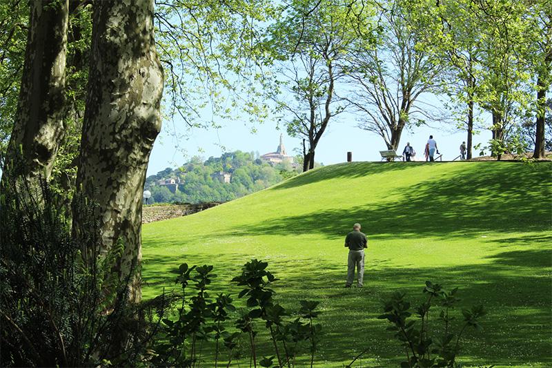 los jardines del palacio miramar se encuentran muy cerca del hotel la galeria de donostia, en ondarreta y sobre el pico del loco. fue la antigua residencia de la reina maria cristina
